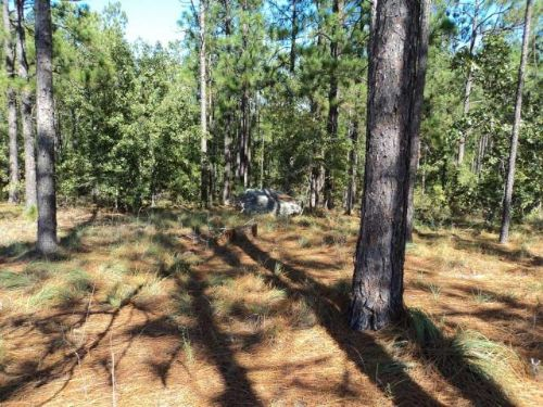 35.7 Acres Fred Chance Road : Millen : Jenkins County : Georgia