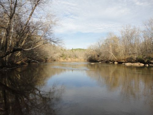 97 Acres On The Broad River : Royston : Madison County : Georgia