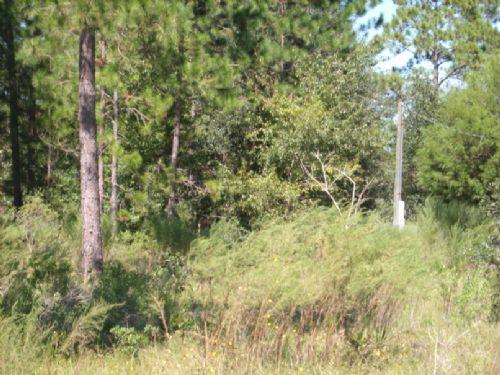 11 Ac  Recreation Site : Waycross : Ware County : Georgia
