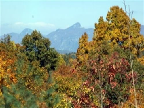 Four 10-acre National Forest Tracts : Collettsville : Caldwell County : North Carolina