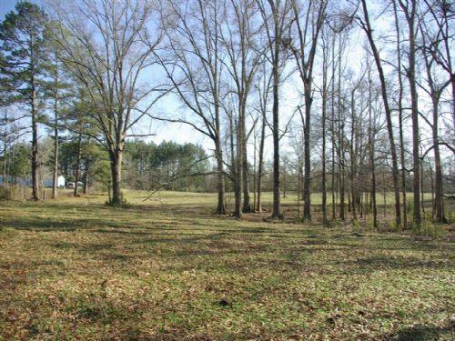 Pasture - Pond -woods & Small Creek : Ragland : Saint Clair County : Alabama