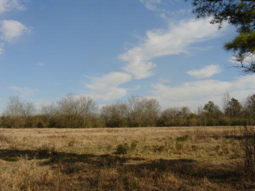 Wetumpka +/-56 Acre : Wetumpka : Elmore County : Alabama