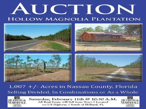 Hollow Magnolia Plantation : Hilliard : Nassau County : Florida
