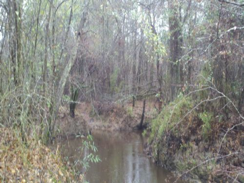 22111sa091 Langston 2 : Farmerville : Union Parish : Louisiana