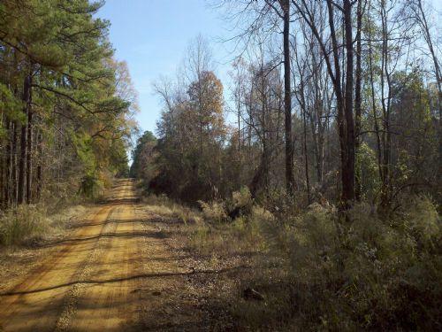 22111sa095 Monument 1 : Farmerville : Union Parish : Louisiana