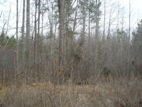 Pleasant Grove Hideaway - 18.20 Ac. : Keysville : Lunenburg County : Virginia
