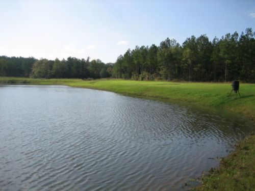 The Pond At Flatwoods : Elberton : Elbert County : Georgia