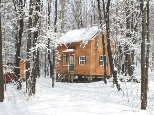 Land & Cabin Bordering State Forest : Florence : Oneida County : New York