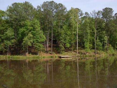 Reduced 71ac W/cabin, Barn, Pond : Madison : Morgan County : Georgia