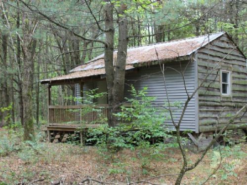 6+ Acres Cabin On Atv Trail System : Albion : Oswego County : New York
