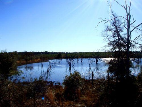 Sunset Ridge : Donalsonville : Seminole County : Georgia