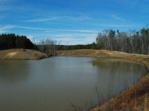Premiere 697-acre Riverfront Tract : Buffalo : Union County : South Carolina