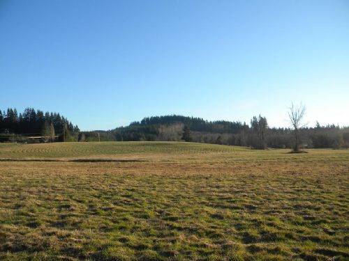 Pasture And Homesite : Rochester : Thurston County : Washington