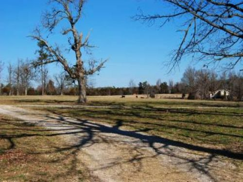 80 Acre Cattle Ranch : Fox : Stone County : Arkansas
