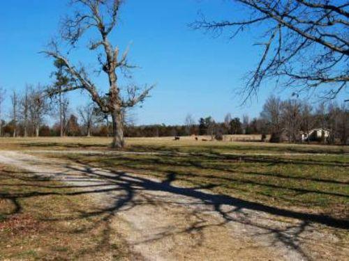 80 Acre Cattle Ranch : Fox : Stone County : Arkansas