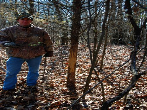 100 +/- Acres On Crowley's Ridge : Haynes : Lee County : Arkansas