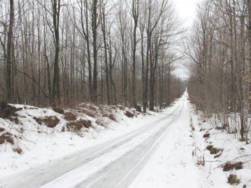 60+ Acres Private Hunting Land : Dickinson Center : Franklin County : New York