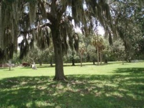 40 Acres With Home And Barn : Brooksville : Hernando County : Florida