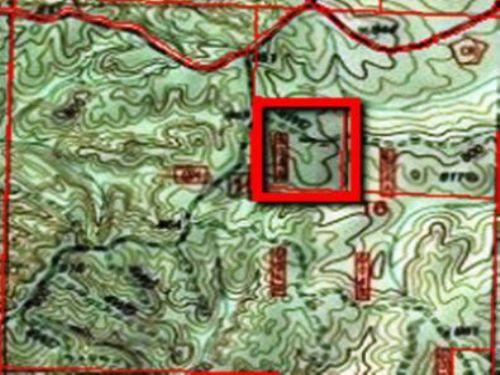 Ac259-30+/- Acres, Talladega, Al : Talladega : Alabama