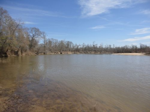 Riverfront- $985/acre : Mcrae : Telfair County : Georgia