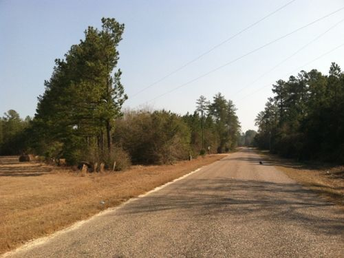 Poor Robin Tract : Sylvania : Screven County : Georgia
