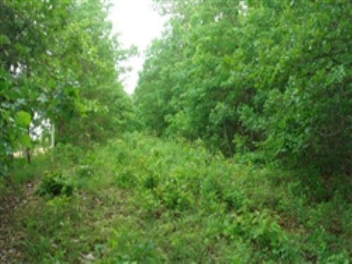 Whispering Oaks Ranch. $310/month : Ozarks : Texas County : Missouri