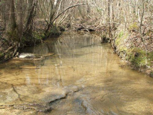 Gilliam Tract 1.4 : Nauvoo : Walker County : Alabama