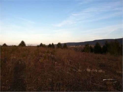 74 +/-acres Land Auction Sat., Apri : Shickshinny : Columbia County : Pennsylvania