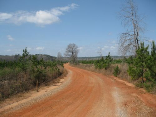 Wade Tract- Parcel 10 : Cuthbert : Randolph County : Georgia