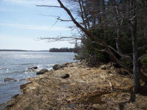 Harrington Bay Parcel : Harrington : Washington County : Maine