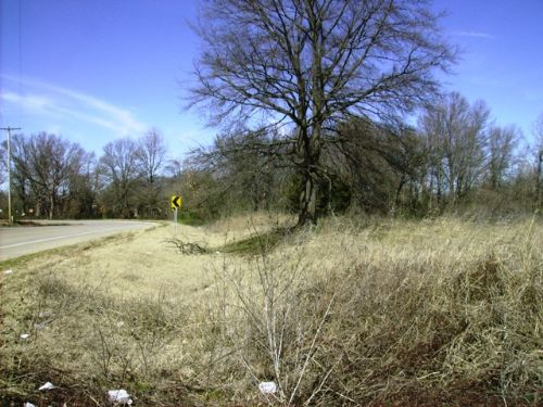20 +/- Acres Of Development Land : Barton : Phillips County : Arkansas