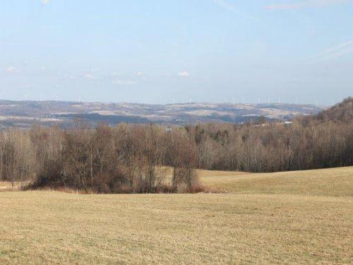 39 Acres Farmland Woods Adirondacks : Newport : Herkimer County : New York