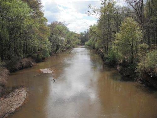 Duck Hunter's Dream : Newnan : Coweta County : Georgia