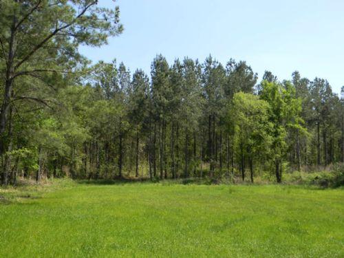 95 Acres : Union Springs : Bullock County : Alabama