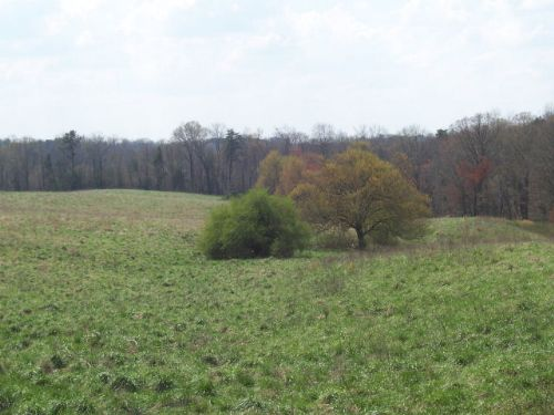 Farmland / Development Potential : Demorest : Habersham County : Georgia