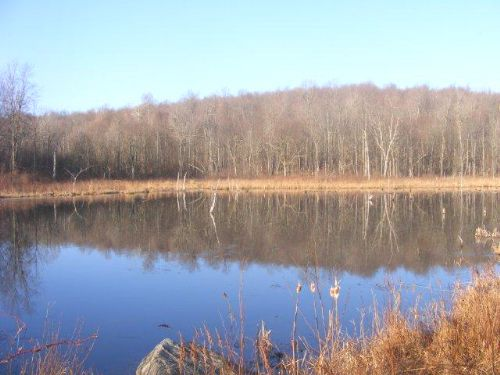 215 Acres Timberland Pond Homesite : Russell : Saint Lawrence County : New York