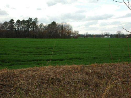 Beautiful 58 Acre Farm On I-74 : Rowland : Robeson County : North Carolina