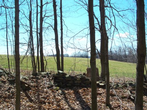 15 Acres Wooded Land Hunting : Pharsalia : Chenango County : New York