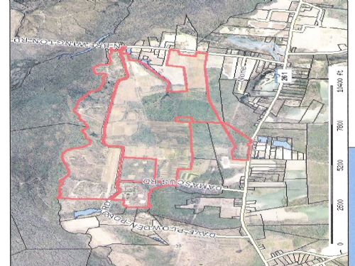 Large Affordable Hunting Tract : Manning : Clarendon County : South Carolina
