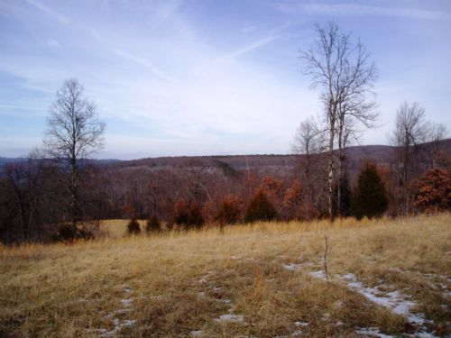 55 Acres Next To National Forest : Hagarville : Johnson County : Arkansas