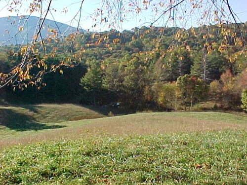 Blue Ridge Mts. Homesite W/views : Elk Creek : Grayson County : Virginia