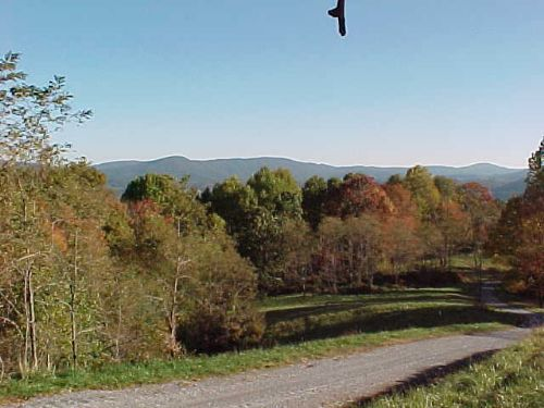 Grayson Mountain Homesite : Elk Creek : Grayson County : Virginia