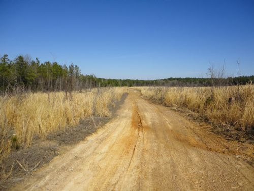 Cummings Tract, 74.4 Acres : Sanford : Lee County : North Carolina