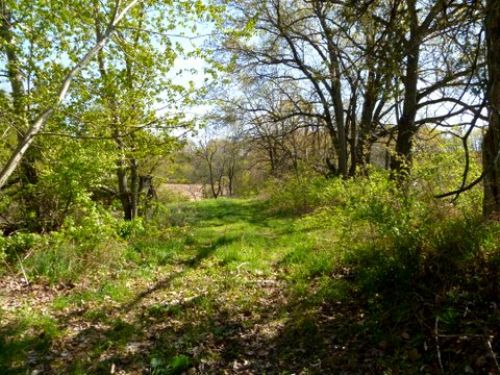 Private, Scenic 68 Acres : Blue Mounds : Dane County : Wisconsin