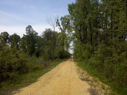 05003sb109 Hanks Creek North 52 : Hambug : Ashley County : Arkansas