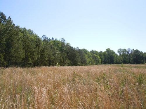123+/- Acres Roberts Bridge Road : Sylvania : Screven County : Georgia