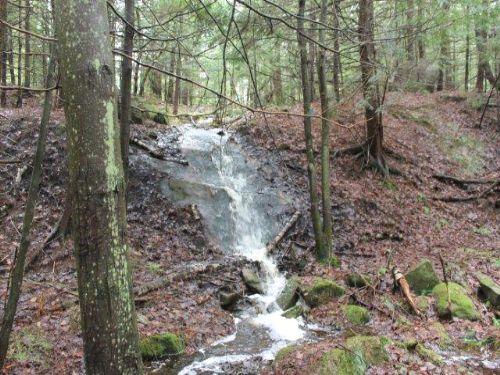 176 Acres Hunting Land Adirondacks : Croghan : Lewis County : New York