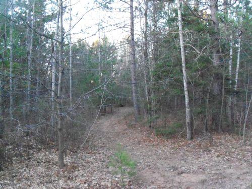 6.17 Acres On Caryl Lane : Minocqua : Oneida County : Wisconsin