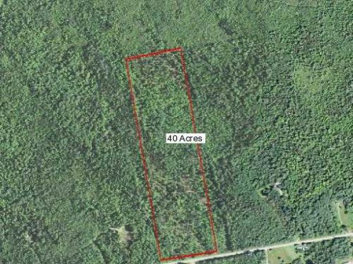 Forty Acre Parcel : Plymouth : Penobscot County : Maine