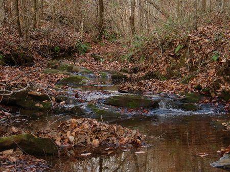 33.87 Acres Of Gorgeous Alabama : Rockford  : Coosa County : Alabama